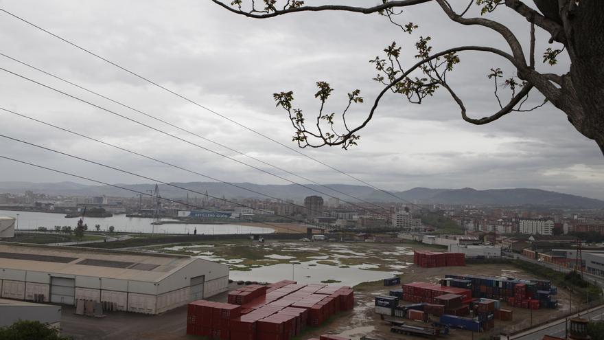 La empresa Sea Eight invertirá 73 millones en construir un centro de cría de lenguados en El Musel