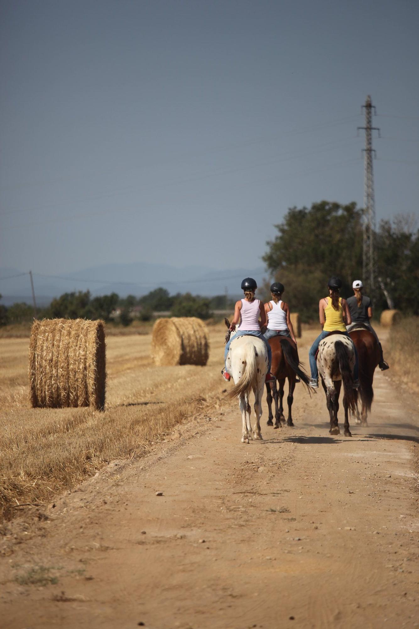 Territori rural de natura viva