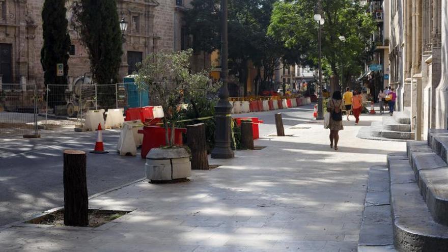 Talan 5 árboles porque tapaban la fachada monumental de la Lonja