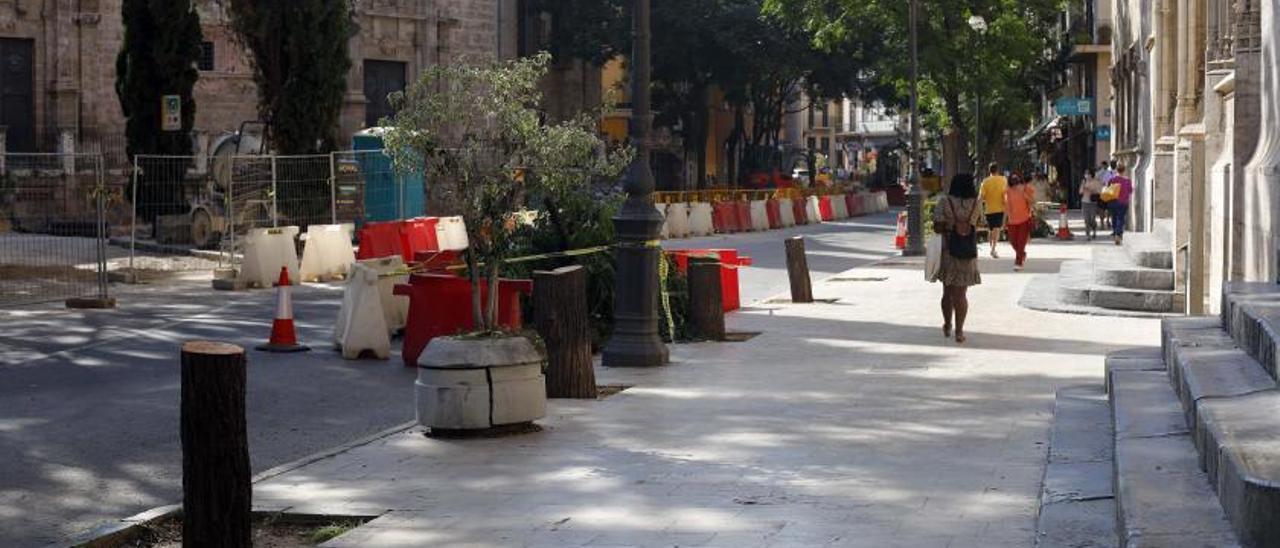 Imagen de los restos de los árboles talados a la misma puerta de la Lonja, ayer. | M.A.MONTESINOS