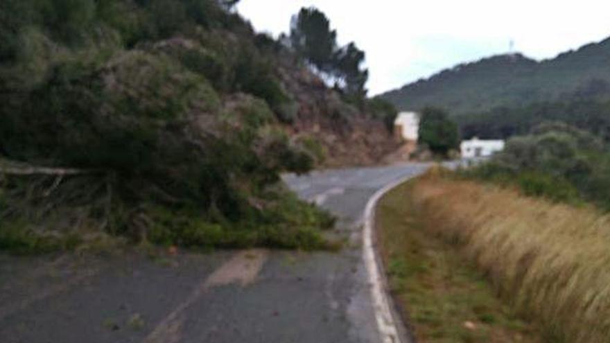 La borrasca 'Gloria'  deja mucha lluvia y rachas de viento de 72 km/h