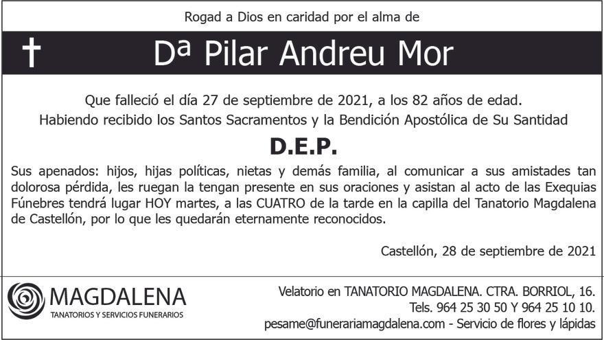 Dª Pilar Andreu Mor
