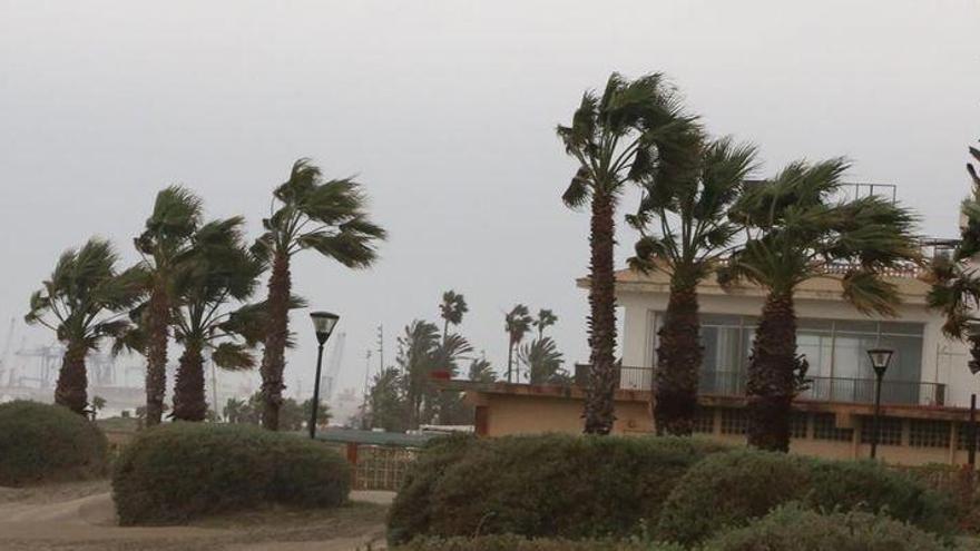 ALERTA EN EL INTERIOR NORTE | Castellón registrará este viernes fuertes rachas de viento