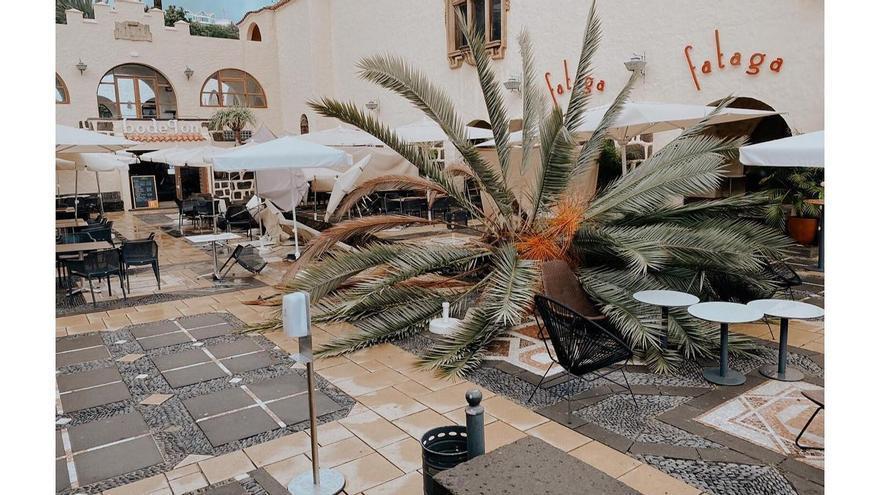 El temporal tumba la mítica palmera del Pueblo Canario