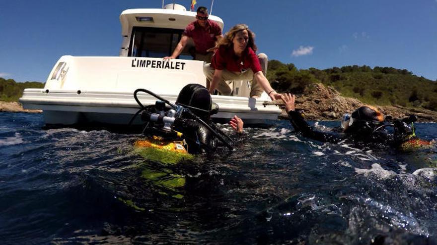 Letzte Hoffnung für die größte Muschel Europas vor Mallorca