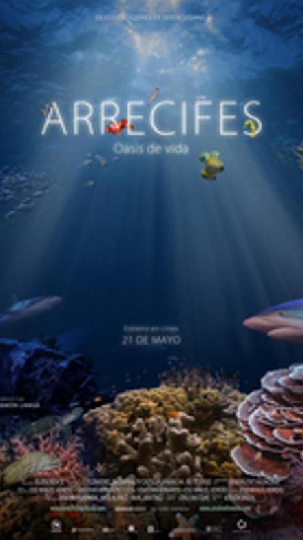 Arrecifes. Oasis de vida