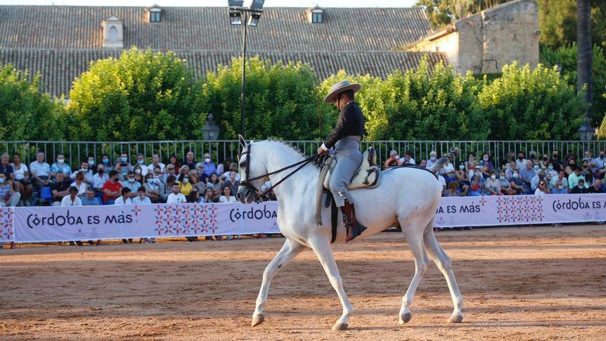 Los mejores ejemplares de caballos árabes se citan en el Alcázar