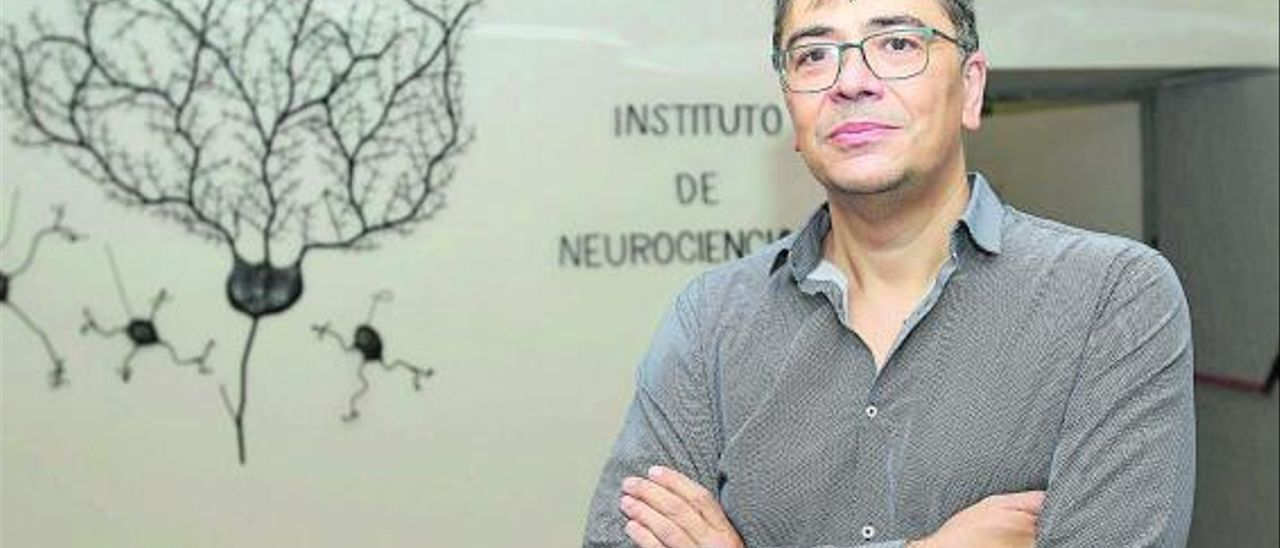 El nuevo director del Instituto de Neurociencias, Ángel Barco. | MANUEL R. SALA