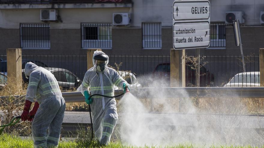 Convocado el comité de control de vectores del virus del Nilo