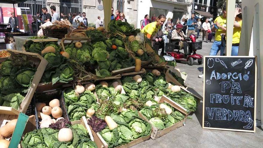 El WWF adverteix que el 40% dels aliments cultivats són malgastats