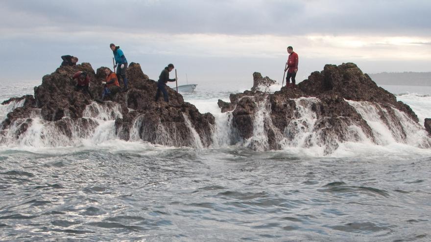 Las cofradías reclaman más vigilancia para acabar con la pesca ilegal de percebes
