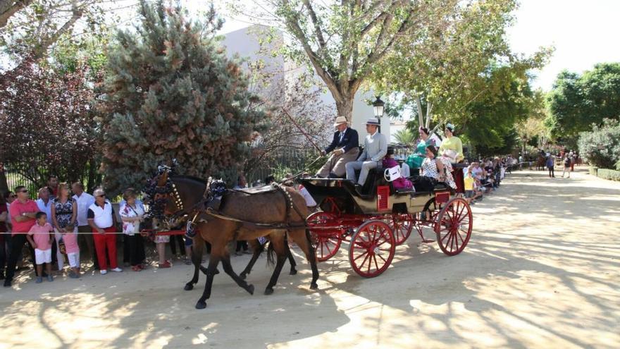 Más de 40 coches de caballos recorren Lorca