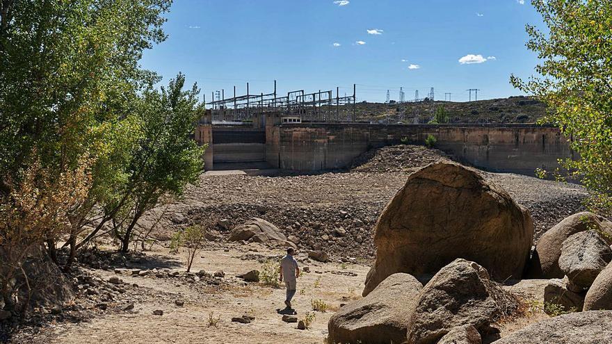 La Diputación de Zamora impulsará la auditoría de Ricobayo si el Ministerio se retrasa