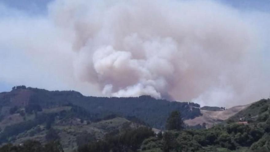 Riesgo de incendios forestales en Gran Canaria por el aumento del calor