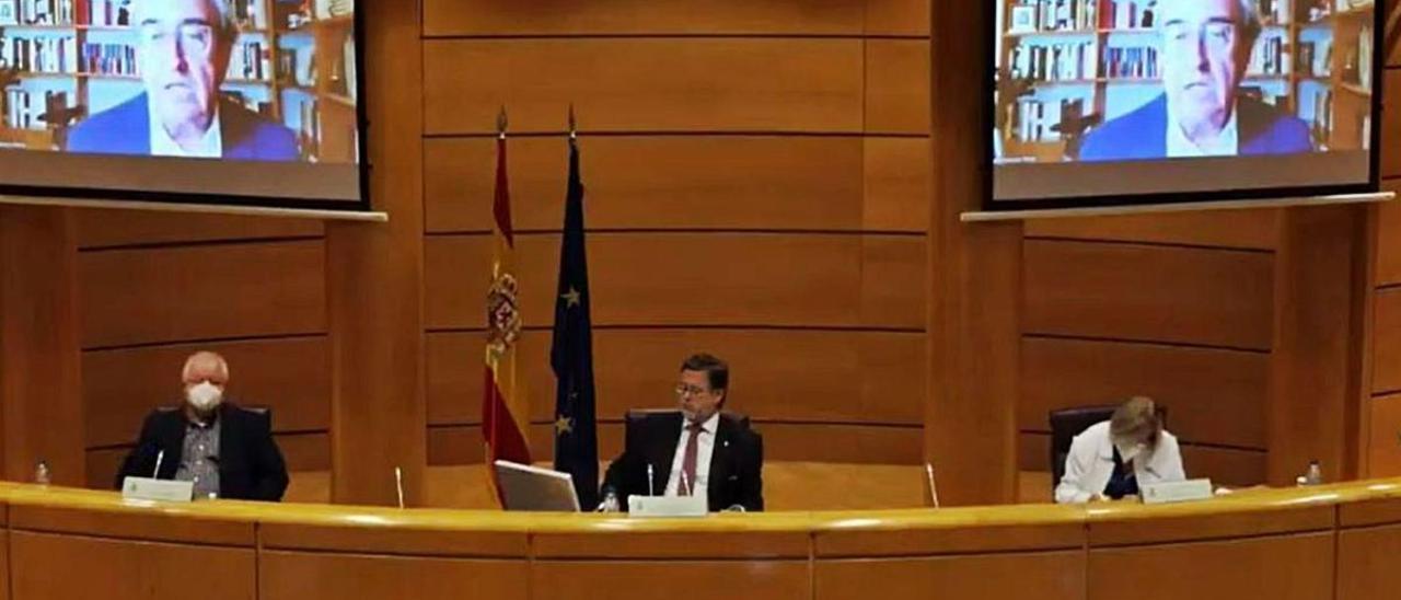 Francisco Pérez, director del IVIE, interviene telemáticamente ayer en el Senado.