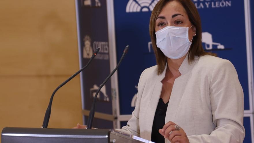 María Teresa Gago valora la política cultural de Castilla y León durante la pandemia