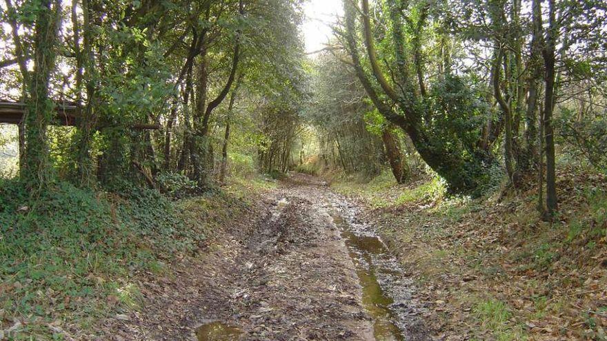 Patrimonio autoriza la mejora de un tramo del Camino de Santiago