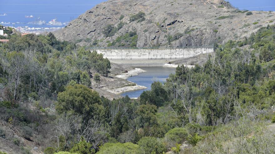 Ecologistas proyectan un observatorio de aves en la presa de la Umbría