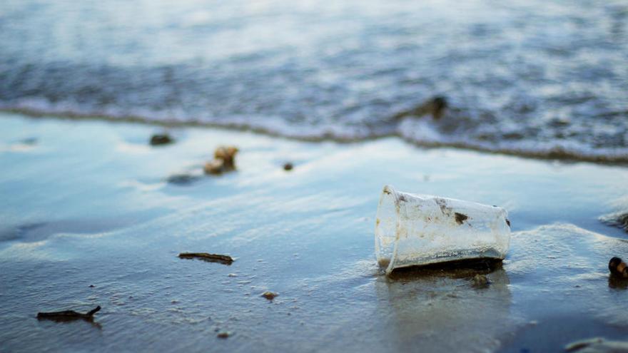 El plástico ya está en los tejidos y órganos humanos