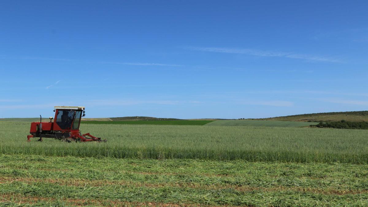 Un tractor en el campo.