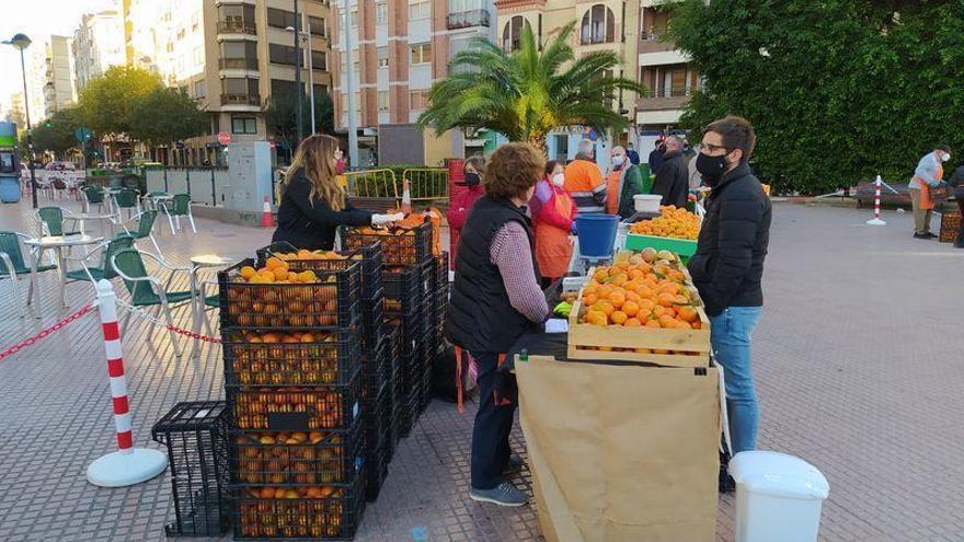 'Cuidem l'agricultura': Arranca la Fira de la Taronja en Castelló