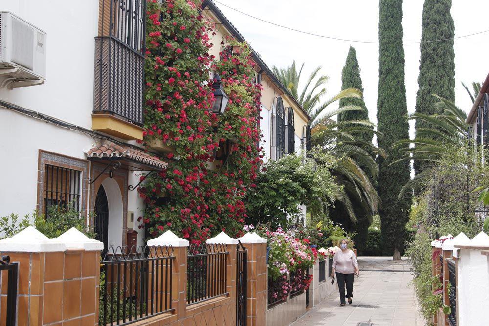 Calle Manuel Soro Tinte 3