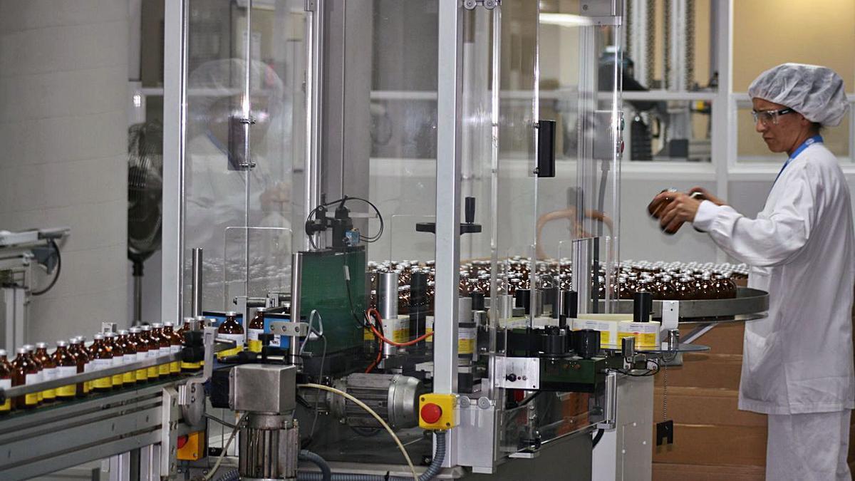 Imatge d'arxiu d'una indústria gironina de productes farmacèutics. | ORIOL PUIG