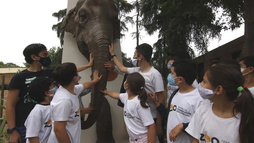El Zoo de Córdoba rinde un sentido homenaje a la elefanta Flavia con la inauguración de una escultura