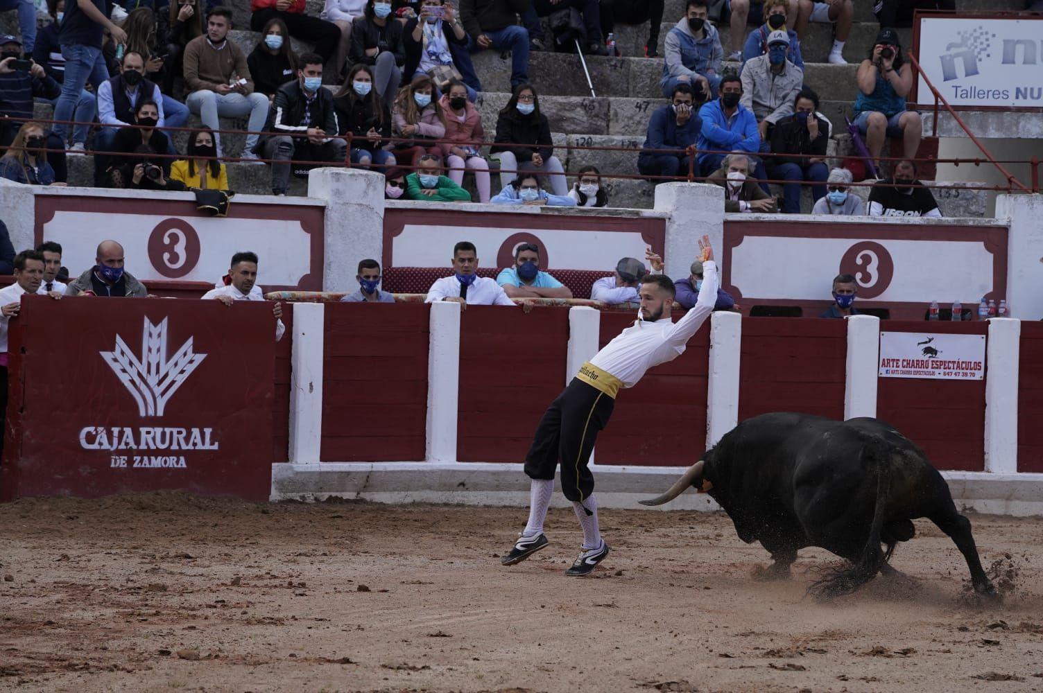 Concurso de Cortes Zamora 2021