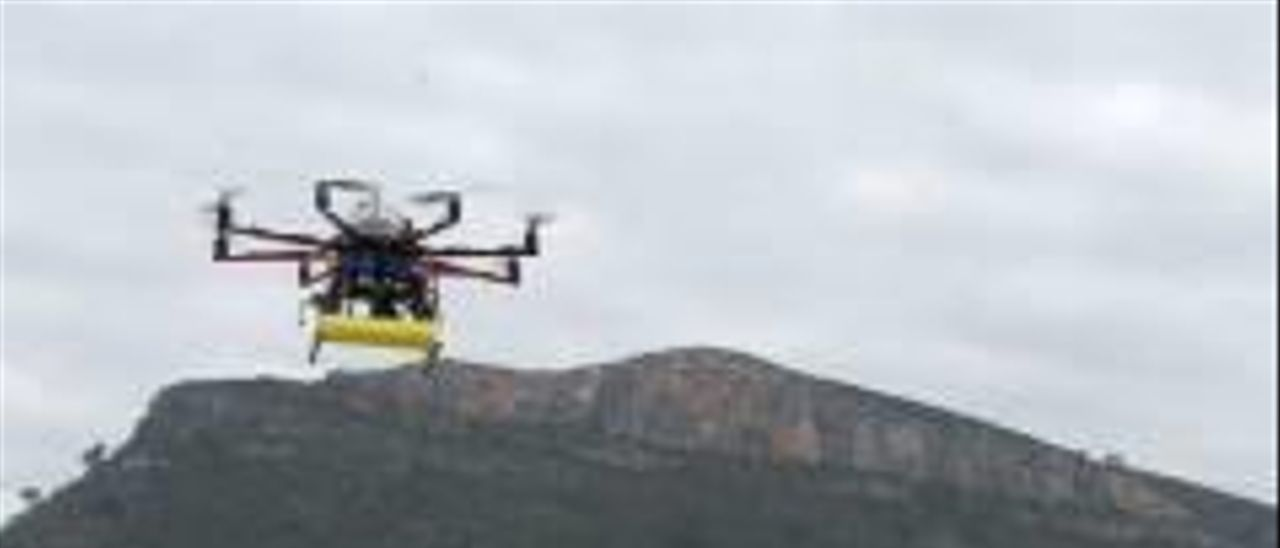 El consejo asesor del paraje reclama prohibir el uso recreativo de drones en la Murta