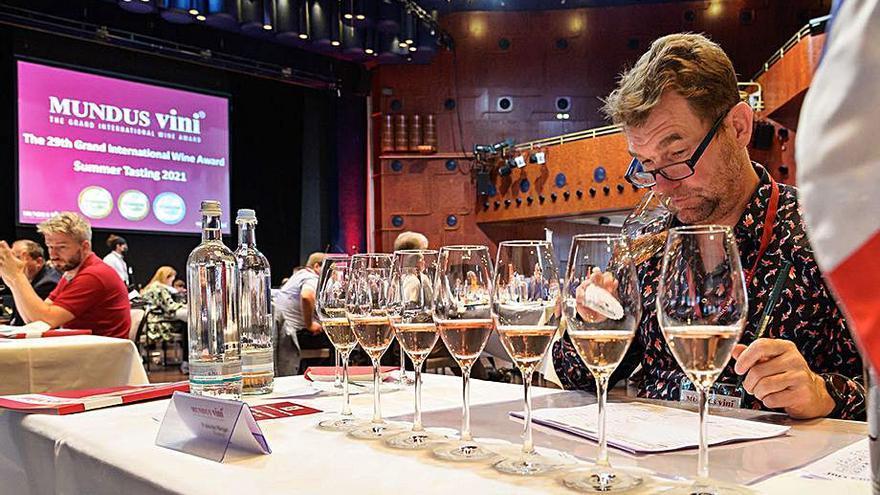 Éxito de los vinos cariñenenses en la 29ª cata de verano Summer Tasting