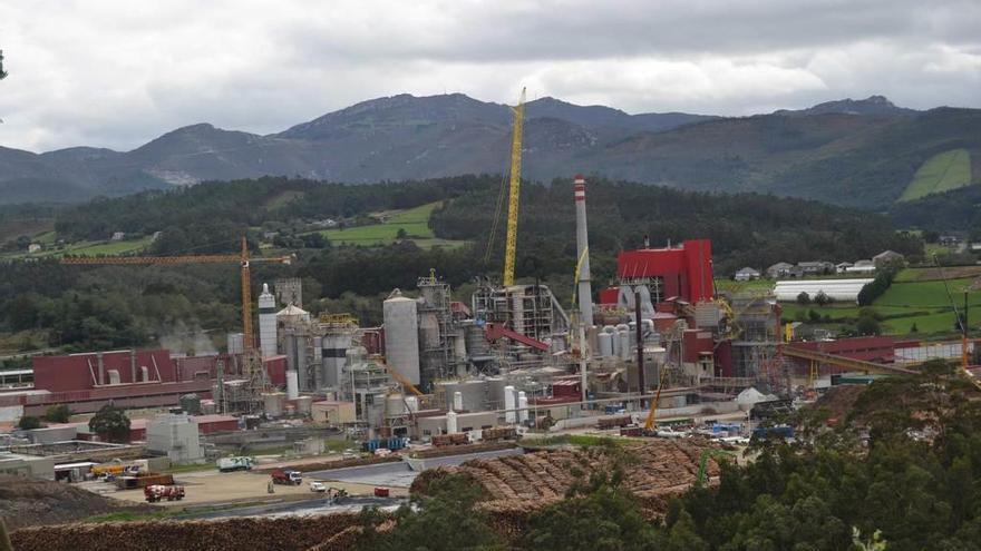 Ence Navia cierra con éxito su ampliación para producir más pasta de celulosa