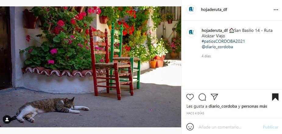 8º Concurso Fotográfico Patios de Córdoba
