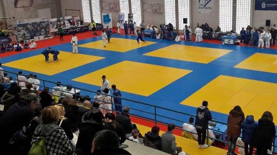 Cerca de 500 judokas participan en los Xogos da Amizade Xogaeduca en el Rías Altas