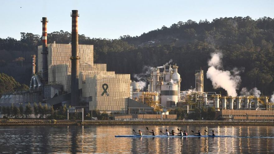 """El comité de fábrica de Ence: """"Si no se solventa la situación de inseguridad jurídica, la fábrica caerá por inanición"""""""
