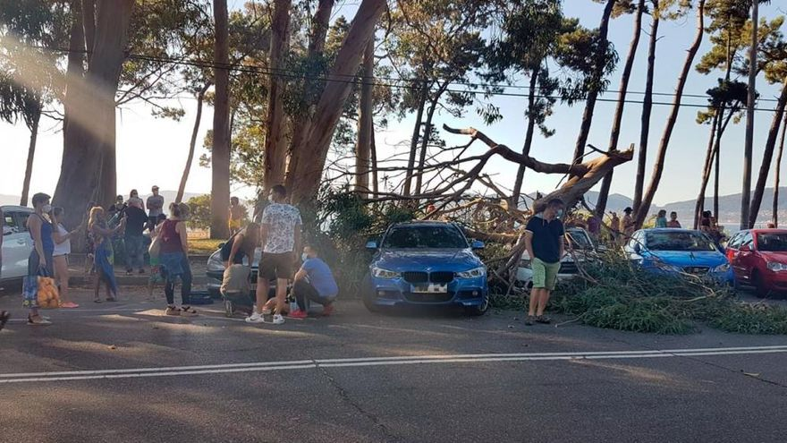Dos jóvenes heridas en Vigo al caer la rama de un árbol sobre su coche