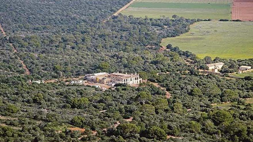Terraferida denuncia que la mitad del suelo rústico protegido por el Govern ya está edificado