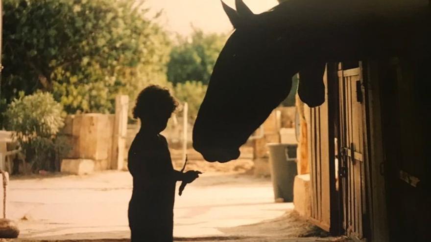 El Govern refuerza el control de entrada de caballos ante el brote de rinoneumonitis