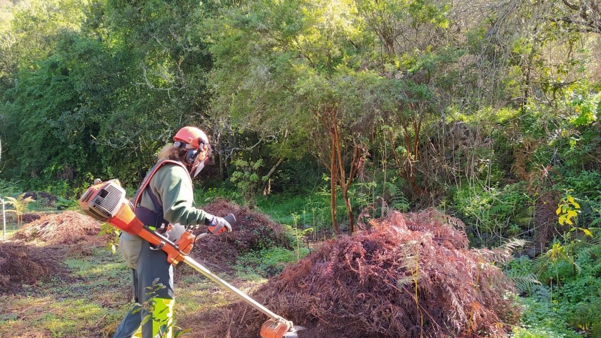 A female worker performs clearing work