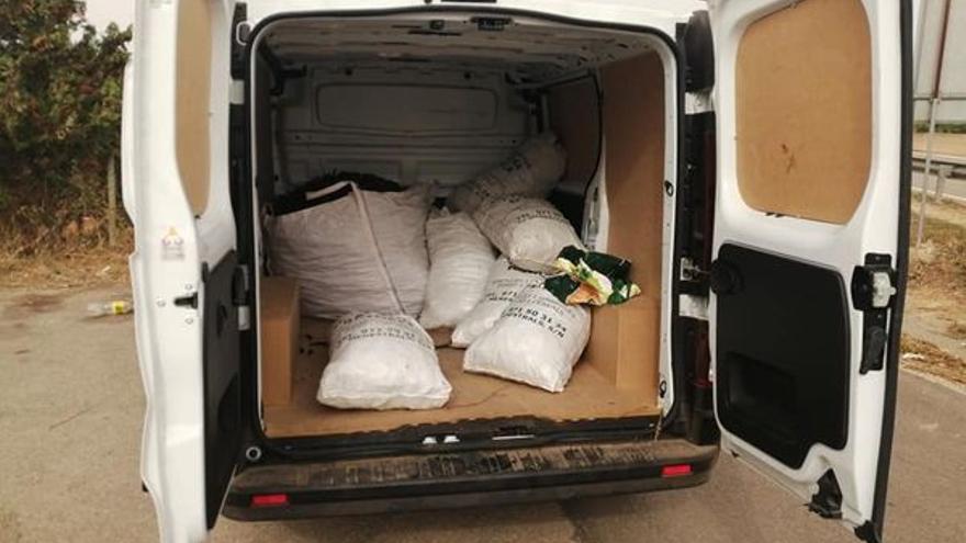 Cuatro investigados por robar más de 400 kilos de algarrobas en una finca en Algaida