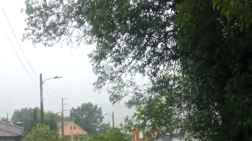 Cae un árbol y corta el paso a la piscina de Cangas