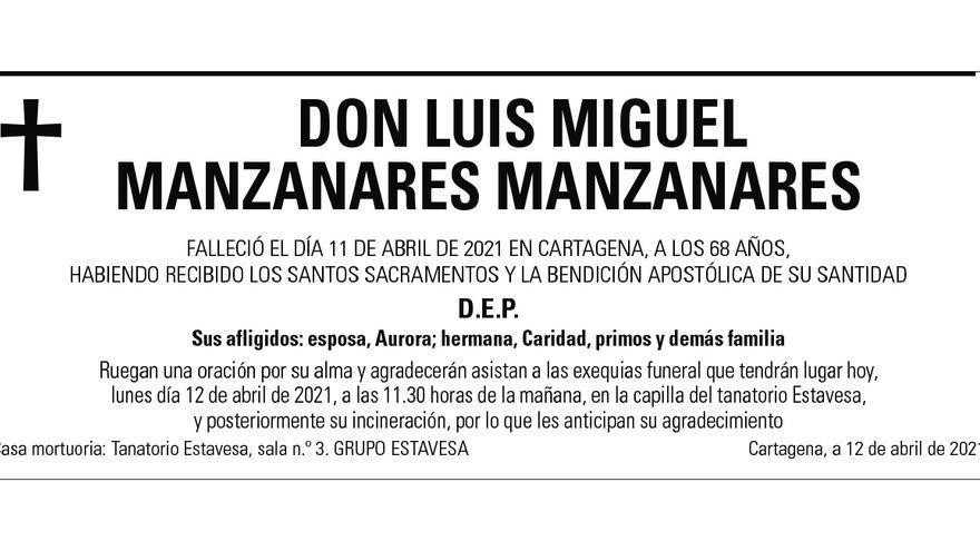 D. Luis Miguel Manzanares Manzanares