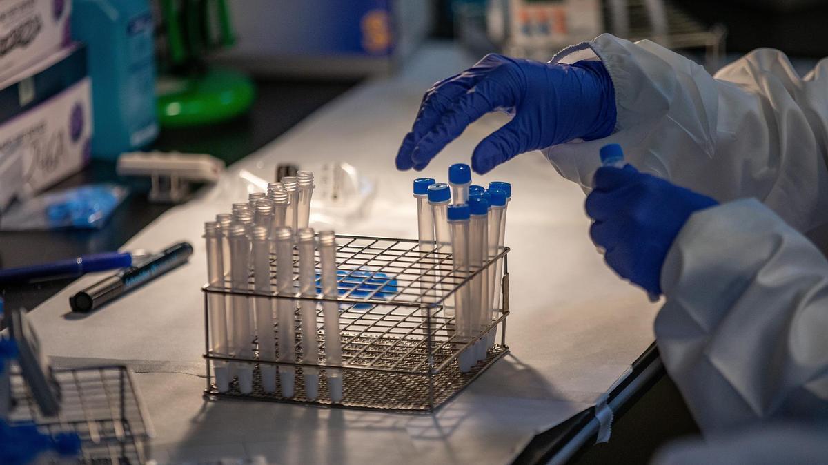 Profesionales sanitarios realizan test antígenos