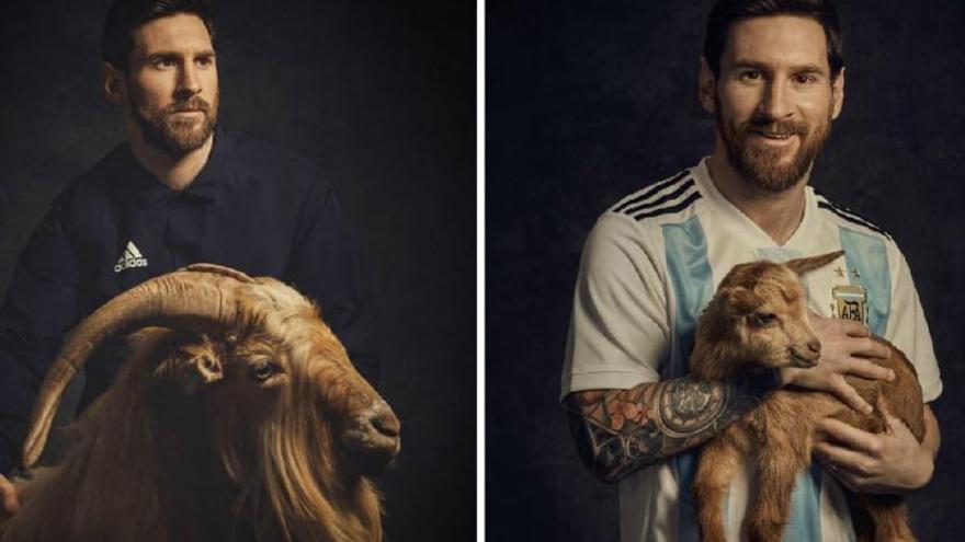 Les cabres que han donat la volta al món amb Messi són bagenques
