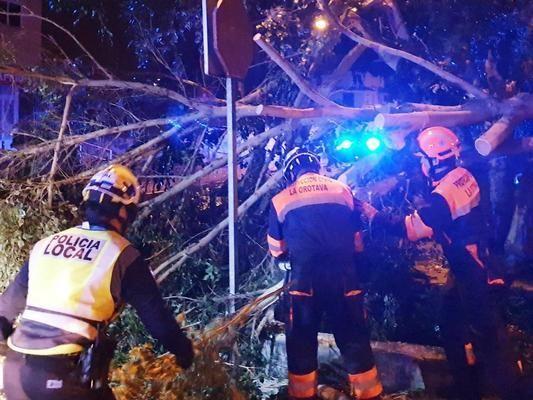 Registran más de 800 incidentes por el viento en Canarias