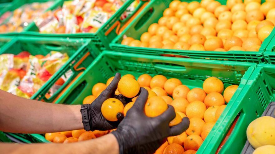 Mercadona comprará este año 200.000 toneladas de cítricos de origen nacional
