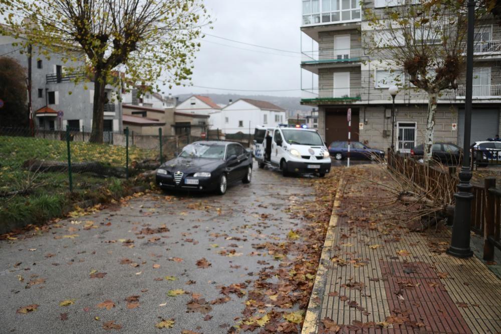 Árbol caído sobre un coche en la Plaza de la Legión de Ourense.