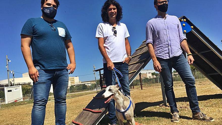 Manacor proyecta una red de parques caninos para atender las demandas de los  dueños