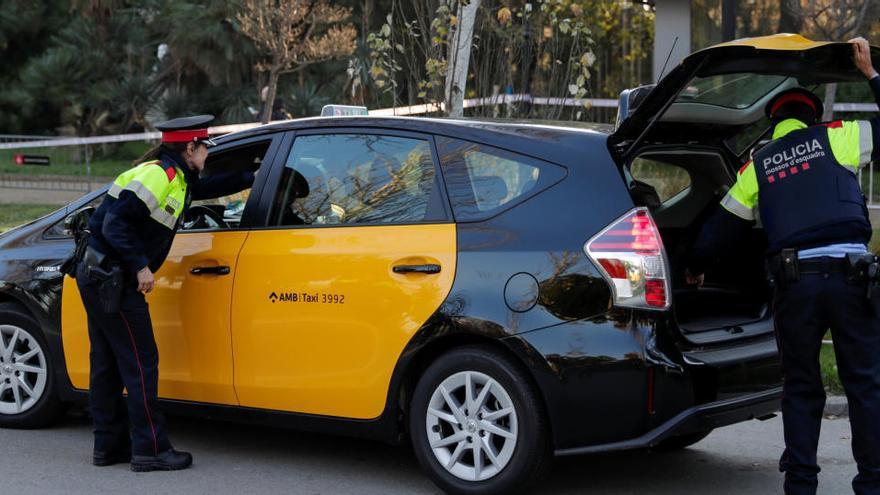 Condenado un taxista por negar el servicio a un invidente con perro guía