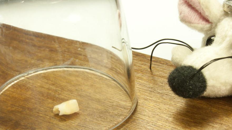 El Ratoncito Pérez tiene permiso para recoger dientes durante el confinamiento